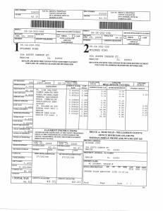 Exhibit N Property Tax Record Cards Williamson County-illinois Il Property Tax Fraud 0433