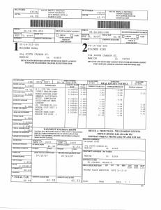Exhibit N Property Tax Record Cards Williamson County-illinois Il Property Tax Fraud 0434