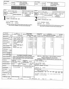 Exhibit S Property Tax Record Cards Williamson County-illinois Il Property Tax Fraud 0121