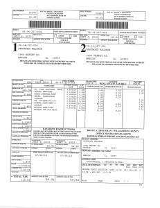 Exhibit U Property Tax Record Cards Williamson County-illinois Il Property Tax Fraud 0027