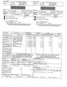Exhibit U Property Tax Record Cards Williamson County-illinois Il Property Tax Fraud 0510