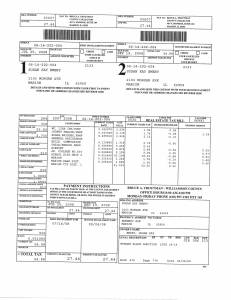 Exhibit V Property Tax Record Cards Williamson County-illinois Il Property Tax Fraud 0187