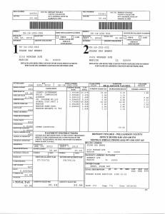 Exhibit V Property Tax Record Cards Williamson County-illinois Il Property Tax Fraud 0212