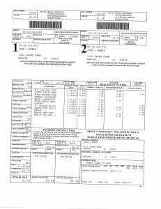 Exhibit V Property Tax Record Cards Williamson County-illinois Il Property Tax Fraud 0226